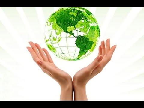 Реферат реймерс н ф экология теория законы правила принципы