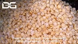 Jinan DG Industrial Savory & Spicy & Salted Gourmet Popcorn Making Machine Hot Air Pop Corn Popper