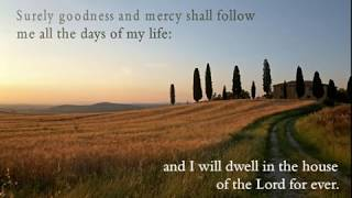 Psalm 23 ~ The Good Shepherd