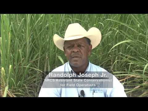NRCS' Gulf of Mexico Initiative - Louisiana