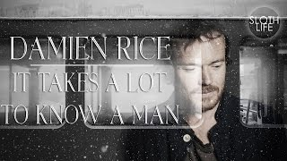 Damien Rice - It takes a lot to know a man