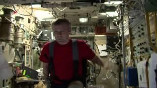 Космонавты в планетарии