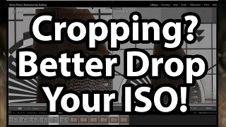 Cropping? Better Drop Your ISO!
