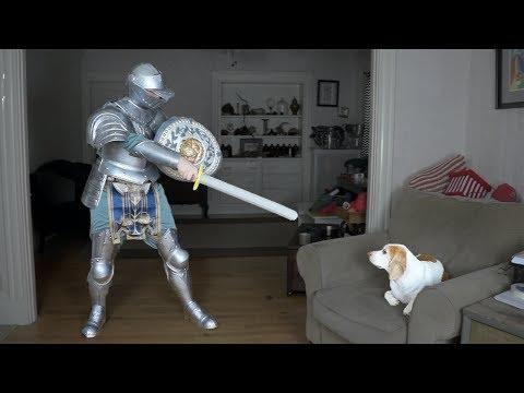 Dog Battles Knight: Funny Dog Maymo