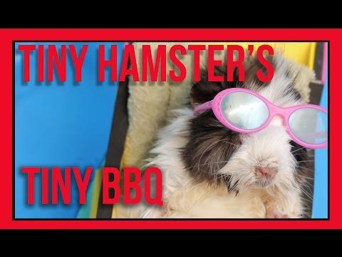 Thumbnail Tiny Hamster Hosts Tiny Holiday BBQ
