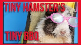 Repeat youtube video Tiny Hamster's Tiny BBQ (Ep. 8)
