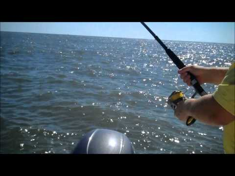 Tarpon Fishing Guides and Charters Myrtle Beach/Georgetown South Carolina