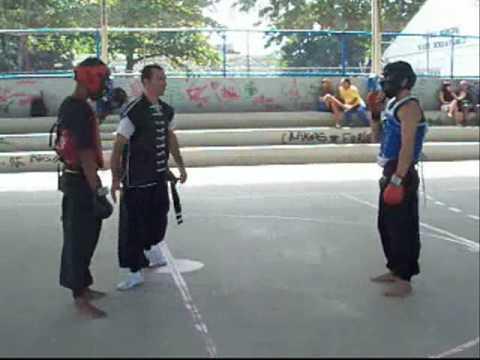 Luta Kung fu 7 estilos