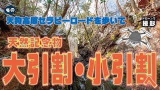 ドローンで撮影!天然記念物「大引割・小引割」Shoot with a drone! Natural monument