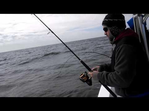 Panama City Beach Mad Fish Charter