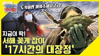 [지금이 딱] 서해 곶해(串蟹) 잡이 17시간 대장정!…
