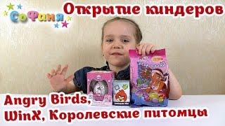 Открытие киндер сюрпризов яиц: Angry Birds, WinX, Королевские питомцы - канал Софани SoFunny