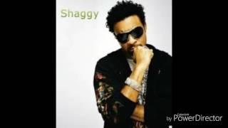 Shaggy - That Love (Audio)