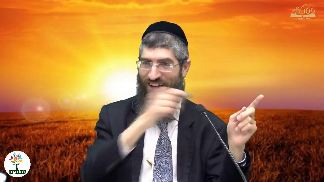 זמני תפילה  הרב יצחק יוסף HD