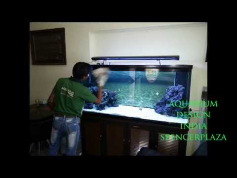 Marine Aquarium in Chennai design By Jabbar Aquarium Design India (Spencer Plaza)