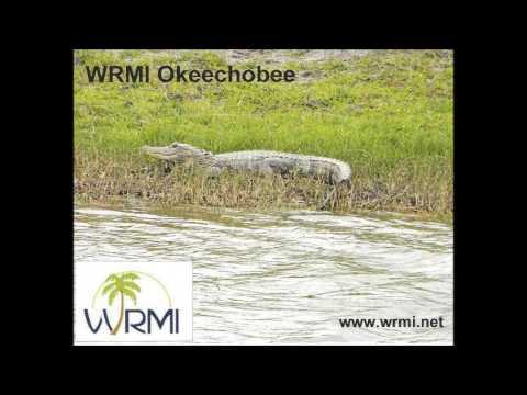 Radio Praha WRMI 02:30 utc on 11580 khz 9 May 2017