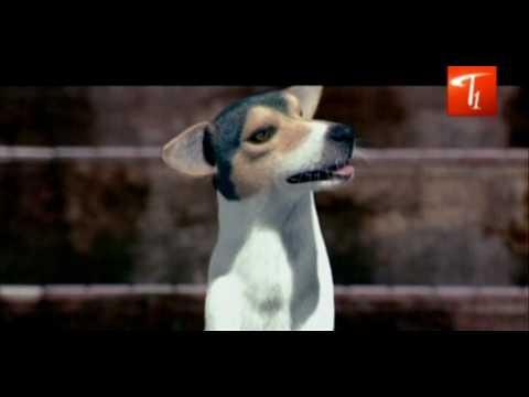 Godavari Comedy | Shekar Kammula voice for a Dog