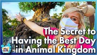 The Secret to Having the Best Day in Disney World's Animal Kingdom