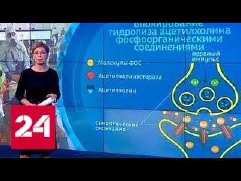 """Газ """"Новичок"""", которым отравили экс-полковника ГРУ, высокотоксичен и очень опасен - Россия 24"""