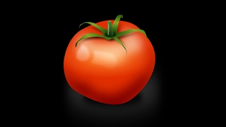 LEARN GERMAN Picture Dictionary  ► die Tomate ⇔ tomato 🍅 ◄ Vocabulary   Example Sentences
