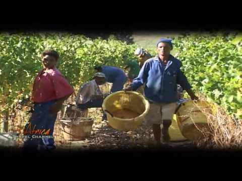 Overview of Stellenbosch Cape Winelands, South Africa