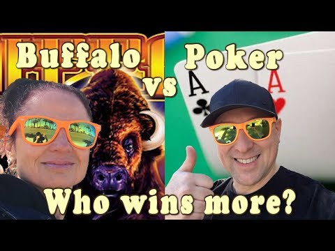 Buffalo Vs Poker Who Wins More?