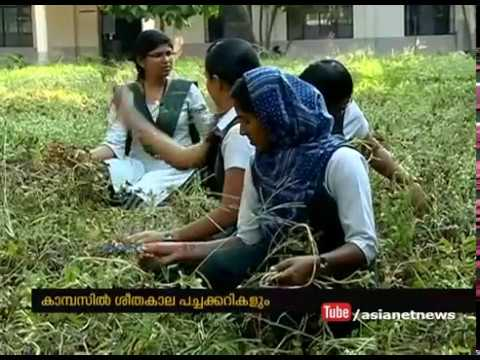 Angamaly FISAT Engineering College students success story in organic farming