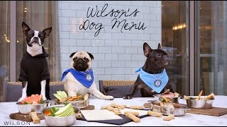Dog Friendly Restaurants in NYC - The Wilson