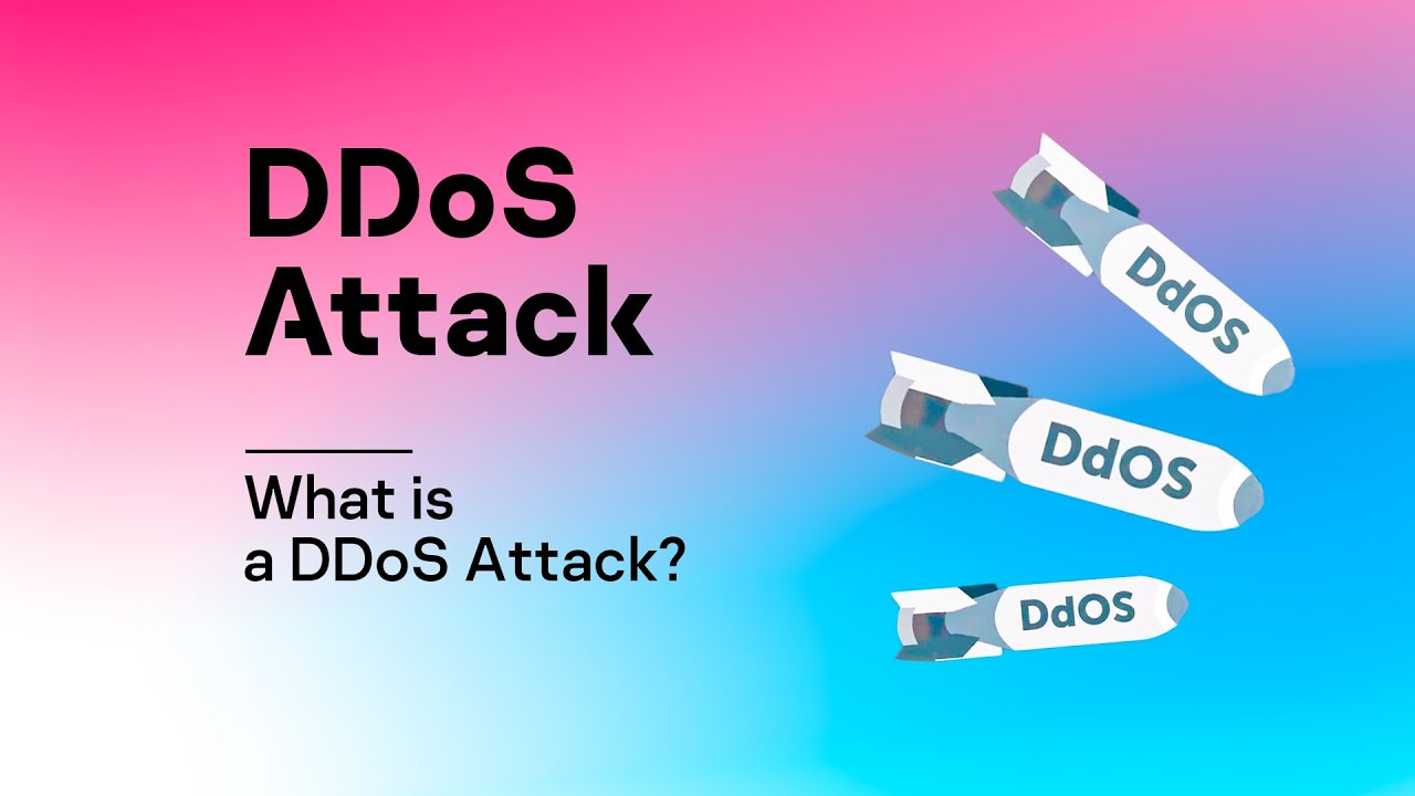 2019 Xvideos.com download attack free ddos linux xvideoservicethief online