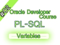 02-  Oracle PL/SQL Arabic course – Variables Part 1 المتغيرات – الجزء الأول