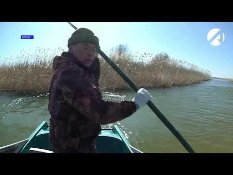 Астраханских рыбаков не радуют осенние уловы