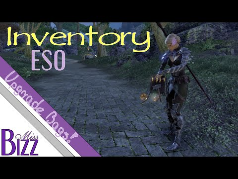 Inventory in Elder Scrolls Online - Bank, Backpacks and Crafting Bags! How to upgrade ESO inventory