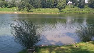 Rijeka  Kupa  Ozalj