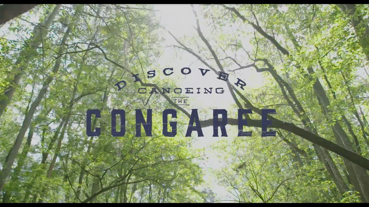 Discover Congaree National Park