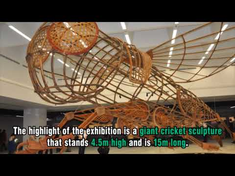 15m long cricket sculpture celebrates popular Vietnamese novel