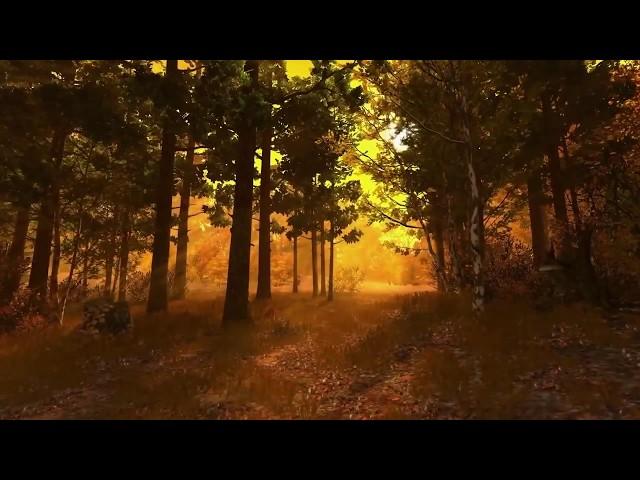 Изображение предпросмотра прочтения – ЕленаГаврилкова читает произведение «Осень» И.С.Тургенева