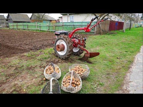 Как сажать картошку мотоблоком под плуг видео