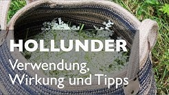 Hollunder - Likör, Sirup, Verwendung, Wirkung und Tipps