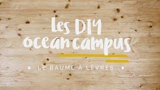 Les DIY Ocean Campus - Comment faire son baume à lèvres maison ? - Surfrider Foundation Europe