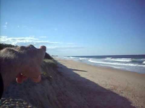 Bokarina beach from Oceanic Boulevard