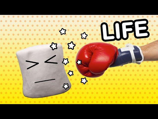 Metaphorical representation of Marshmallow's life (meme inspired)