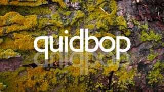 kelis - trick me (quidbop remix)