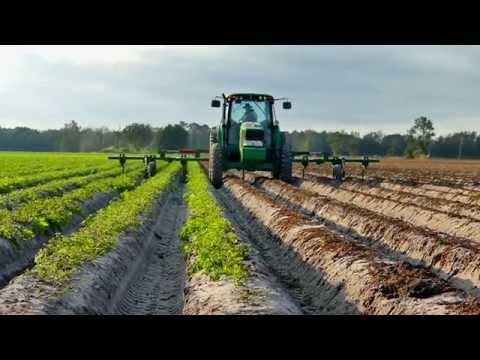 FFVA - Blue Sky Farms