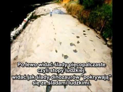 dr Don Patton ZAPISKI SKAŁ - zakazana  archeologia - THE RECORD OF THE ROCKS