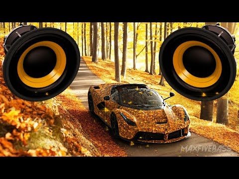 Hugel Ft. Amber Van Day - WTF (ESH Remix) (BASS BOOSTED)