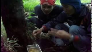 Video Gunung Lawu # 2 download MP3, 3GP, MP4, WEBM, AVI, FLV Desember 2017