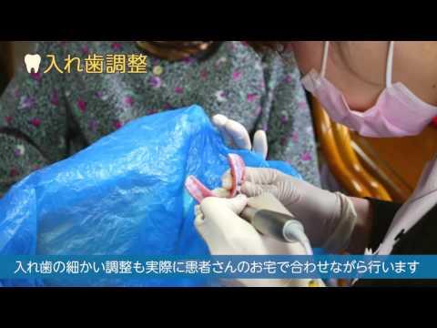 訪問歯科医師の業務内容