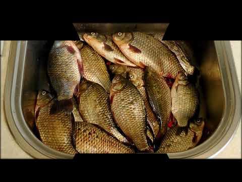 фишхантер приманка для рыбы