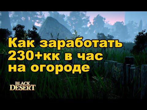 🌱 236кк в час на огороде BDO. Фарм серебра в Black Desert (MMORPG)