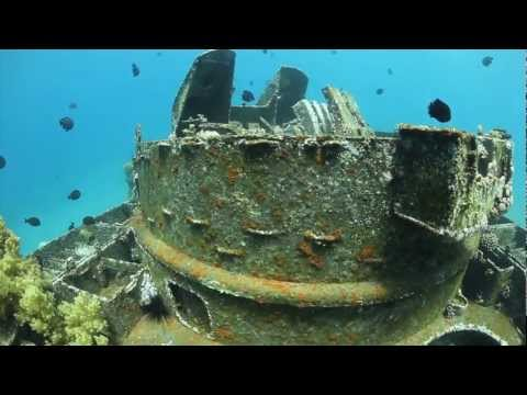 Dive In Aqaba :  The Tank Wreck